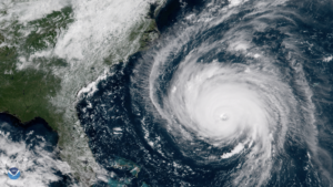 Cover photo for Hurricane Florence Agriculture Disaster Program: Know Your Application Status and the Payment Calculation Process